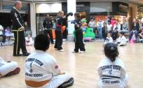 5-Martial-Arts-Show