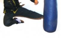 1a-RA-jumping-swing-L